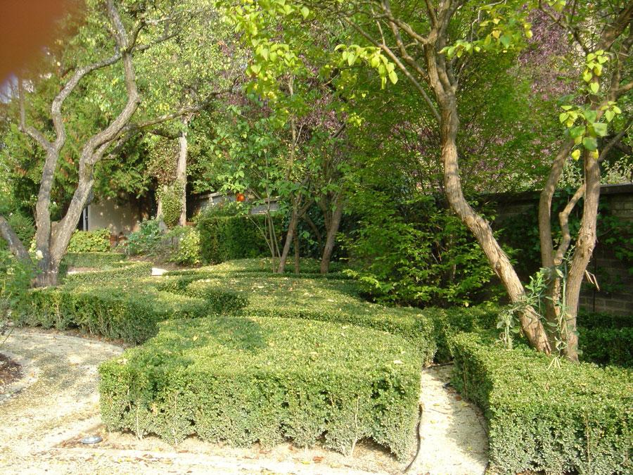 2-d-ambasiata-dirlanda-giardino-di-ricevimento