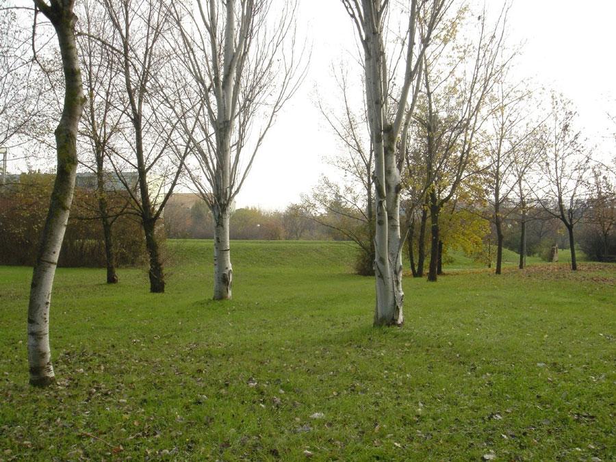 9-g-il-giardino-botanico-autunno