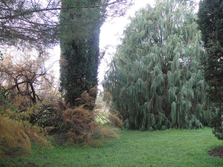 9-g-botanico-autunno